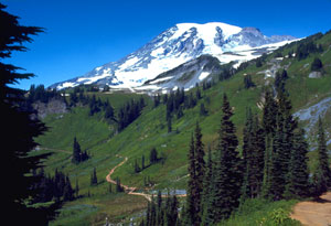 Mount Rainier National Park NPS picture